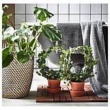 IKEA INGEFARA (302.580.41) Цветочный горшок с подставкой, фото 7