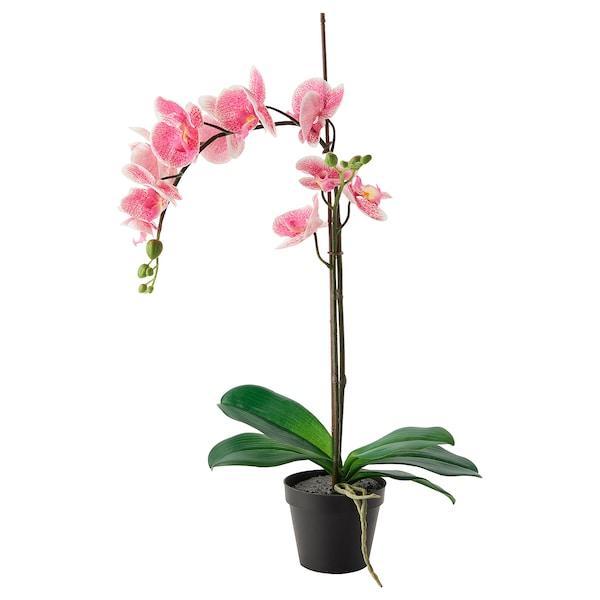 FEJKA ФЕЙКА Штучна рослина в горщику  - Орхідея рожевий - IKEA