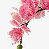 FEJKA ФЕЙКА Штучна рослина в горщику  - Орхідея рожевий - IKEA, фото 4