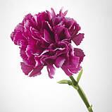 SMYCKA СМЮККА Штучна квітка - гвоздика/темно-бузковий - IKEA, фото 3