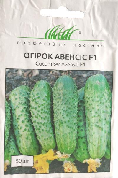 Семена огурца Авенсис F1  50 шт. самоопыляемый NongWoo Bio