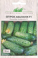 Семена огурца Аваланж F1 50 шт. самоопыляемый NongWoo Bio