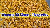 Пыльца, пчелиная обножка, Квітковий пилок, обніжжя бджолине 0,5 кг, 2020 года