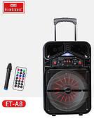 Профессиональная активная акустическая система Earldom с беспроводным микрофоном  Мощность 120 Ватт
