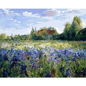 Картина по номерам 40х50 см DIY Ирисов цветение Тимоти Истон (NX 9224)