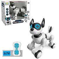 Интерактивная собака робот на радиоуправлении 20173, фото 1