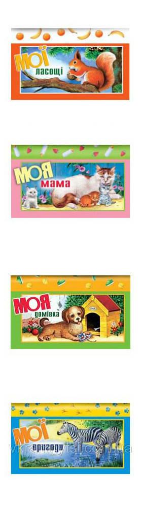 """Книжки-лото. 4 книги-іграшки за принципом """"підбери пару"""""""