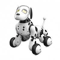 Робот Собака на радиоуправлении Zoomer 9007A, фото 1