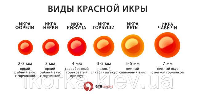 Купить красную икру по лучшим ценам в Киеве