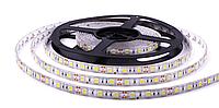 """Светодиодная LED лента гибкая 12V PROLUM IP65 5050\60 Series """"S"""", Белый (5500-6000К)"""