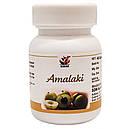 Амалаки капсулы (Amalaki Capsules, SDM), 40 капсул - Аюрведа премиум качества, фото 5