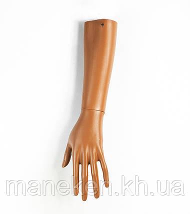 Рука правая женская до локтя PN3 (телесный) (033), фото 2