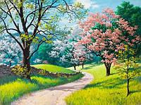 Картина по номерам 40х50 см DIY Весна (NX 9246)