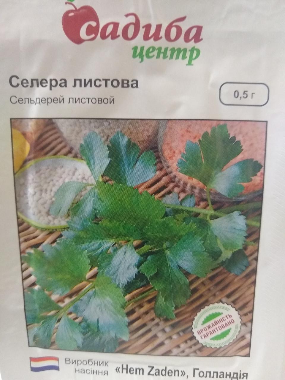 Насіння селери листової  0,5 грам насіння Hem Zaden Голландія
