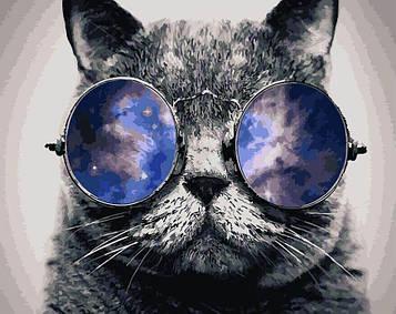 Картина за номерами 40х50 см DIY Кіт в окулярах (NX 9485)