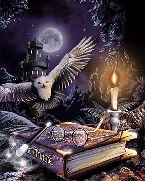 Картина за номерами 40х50 см DIY Магія казки (FX 30339)