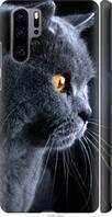 Силиконовый чехол на Huawei P30 Pro Красивый кот