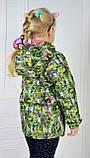 Детская ветровка для девочки рост 98, Вегас, фото 3
