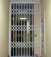 Решетки раздвижные на двери Шир.1365*Выс2100мм для банков, фото 1