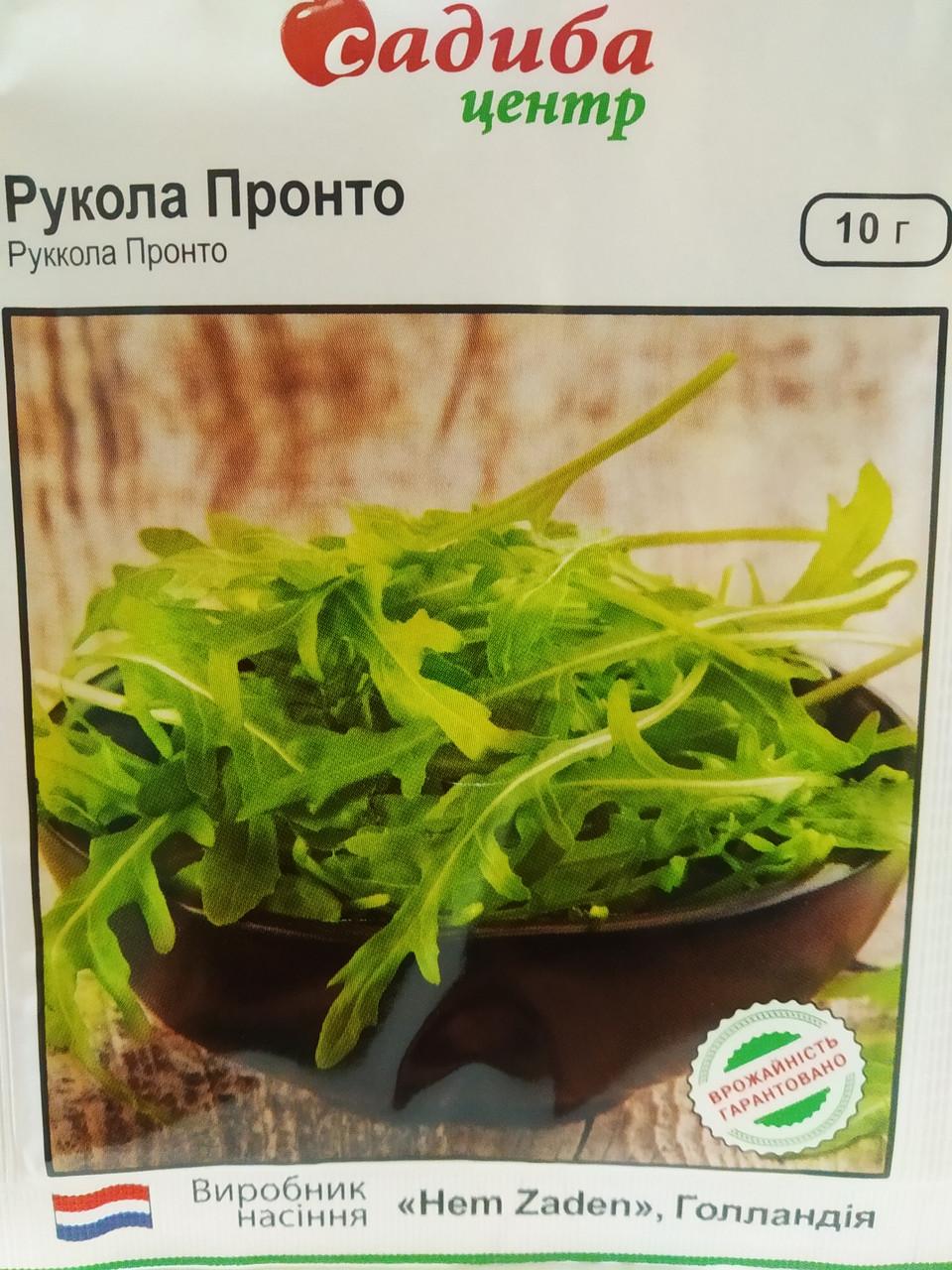 Насіння руколи Пронто сорт холодостійка листочки розсічене Hem Zaden Голландія 10 грам насіння