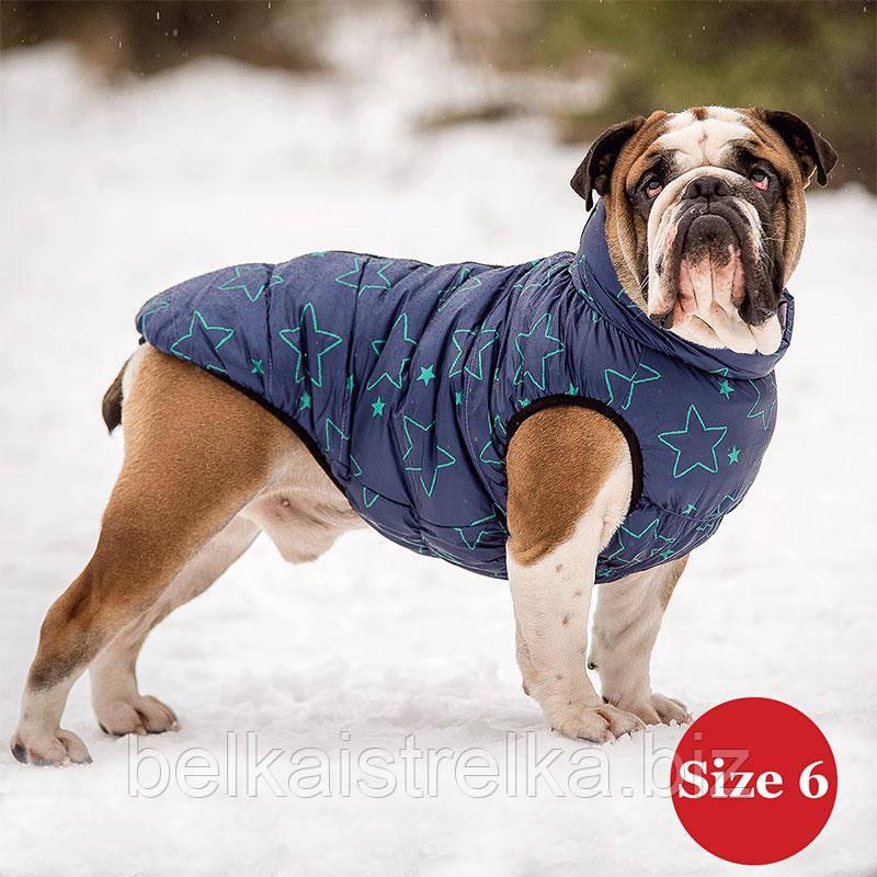 Жилет для собаки утепленный DIEGO sport  6/7 звезда, размер 6