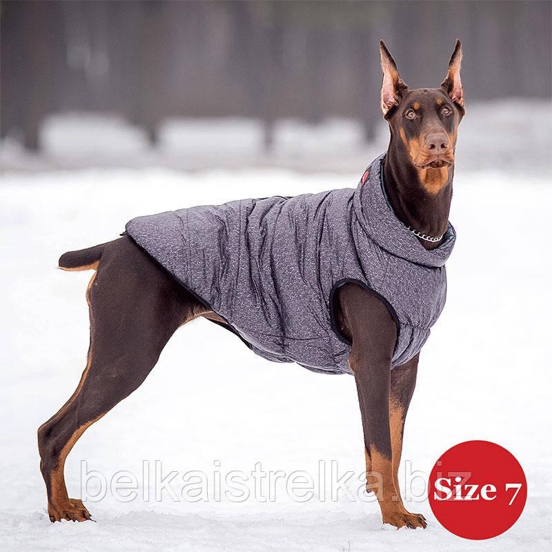 Жилет для собаки утепленный DIEGO sport  7/2 серый, размер 7