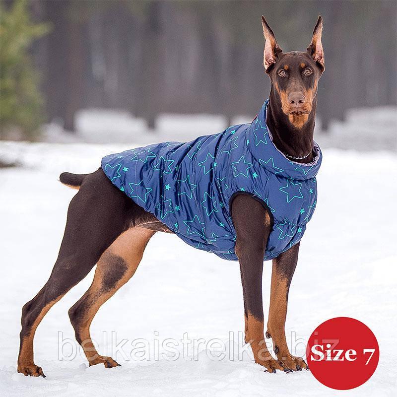 Жилет для собаки утепленный DIEGO sport  7/7 звезда, размер 7