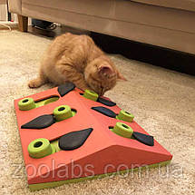 Интерактивная игрушка – головоломка для кошек Арбуз Nina Ottosson & Play Melon Madness, фото 3