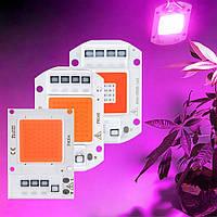 Светодиодный модуль COB LED 35W AC220 для растений