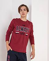 Мужской комплект со штанами и кофтой с длинным рукавом