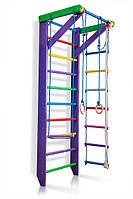 Детский деревянный спортивный комплекс для дома SportBaby Разноцветный (Карусель 2-220)