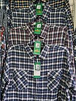 Рубашка теплая мужская на пуговицах норма байка