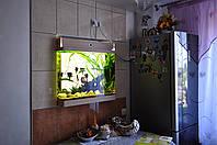 Аквариумы из акрила, встроенные в стену