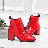 Яркие красные глянцевые женские замшевые ботинки ботильоны на шнуровке, фото 3