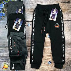 Спортивные штаны с утеплителем для мальчика Размеры: 4-5,6-7,8-9 лет (01214)