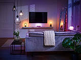 MELINERA розумна гірлянда Smart Home 100312329, фото 3