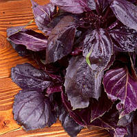 Семена Базилика фиолетового Дарк Опал