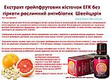 Екстракт грейпфрутових кісточок ЕГК без гіркоти рослинний антибіотик Швейцарія, фото 3