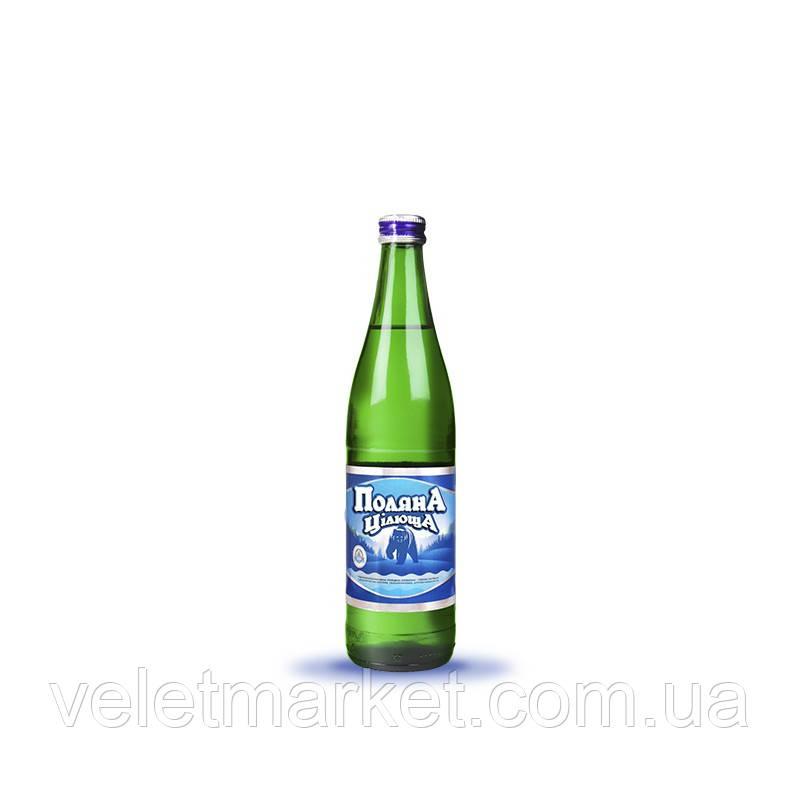 Вода мінеральна Поляна цілюща Шаянські мінеральні води газована в скляній пляшці 0.5 л (4820026950440)