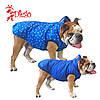 Жилет для собаки двосторонній DIEGO sport double 6/9 Сніжинки, розмір 6