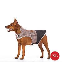 Жилет для собак DIEGO Vest Print 1 коричневый, размер XL, фото 1