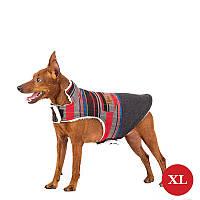 Жилет для собак DIEGO Vest Print 2 червоний, розмір XL, фото 1