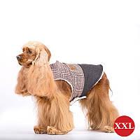 Жилет для собак DIEGO Vest Print 1 коричневий, розмір XXL, фото 1