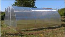 Теплица «Веган» 4х10 из оцинкованной квадратной трубы с поликарбонатом Soton 6 мм