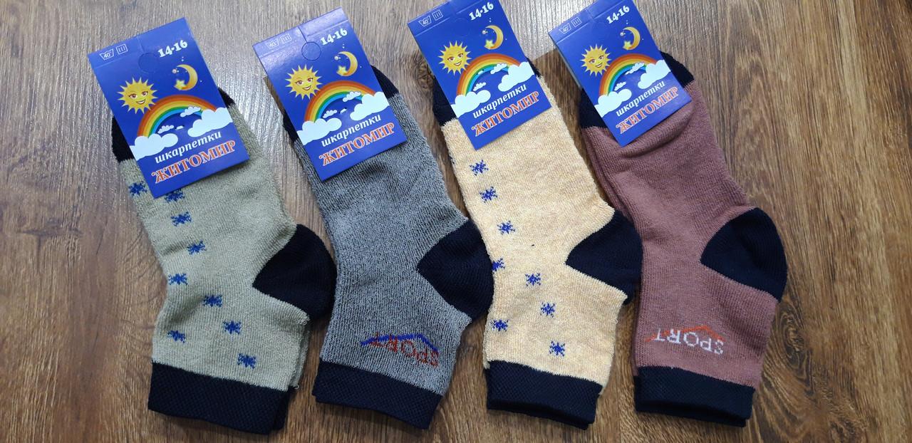 Дитячі махрові шкарпетки «Житомир Сонечко»