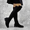 Ботфорты на полную ногу черные женские демисезонные эко замша  b-426, фото 10