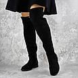 Ботфорты на полную ногу черные женские демисезонные эко замша  b-426, фото 9