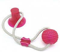 Интерактивная игрушка для собак и кошек канат на присоске с мячом красный  (RZ788), фото 1