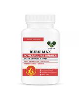 Жиросжигатель комплексный BURN MAX для похудения Powerful fat Burner 4 in1 En`vie Lab (100 caps)