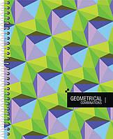 Блокнот А5 60 листов, Е20226 на пружине, картонная обложка Economix, в клетку